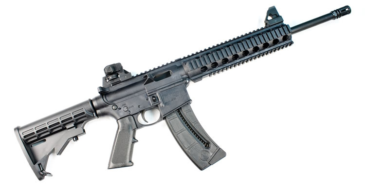Smith & Wesson MP 15-22 – Ovelha disfarçada de Lobo