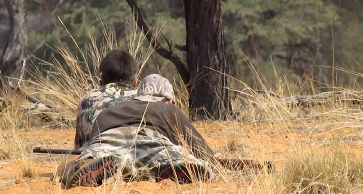 Caçada africana: Kalahari parte II
